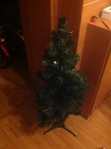 圣诞看Yasir的参与热情